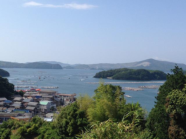 浦村かき筏