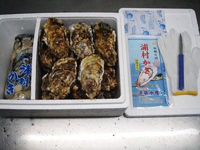 浜英水産製 牡蠣むき身(加熱用)1kg&セル牡蠣20個セット